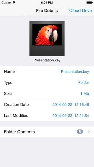 dedicated iCloud Drive app file details