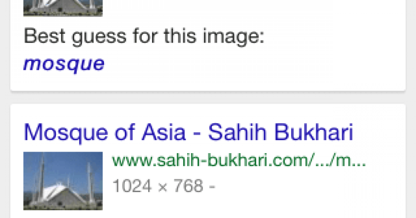 reverse image search workflow results