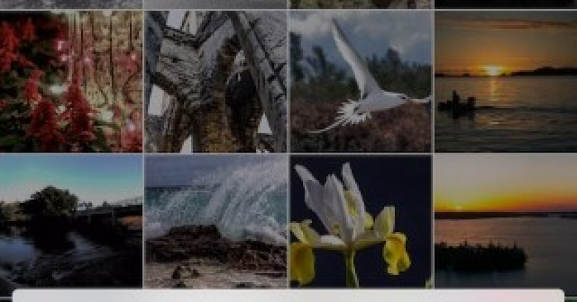 sort photos by size creation date file name