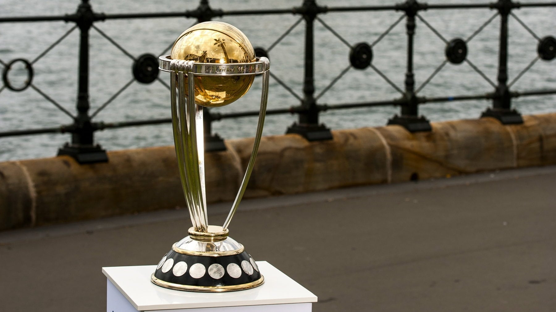 eassy on cricket world cup 2011 cricket cup the 2011 icc cricket world cup was the tenth cricket world cup it was played in india, sri lanka, and (for the first time) bangladesh.