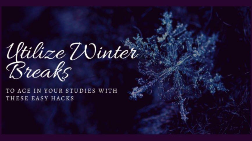 Winter Break, free time, Establish a Schedule, Study Group, Peak Time