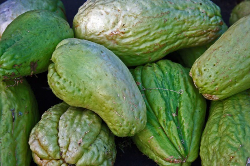Chayote, Properties of Chayote, Lower Blood Pressure, Chayote Skin Benefits, Properties of Chayote