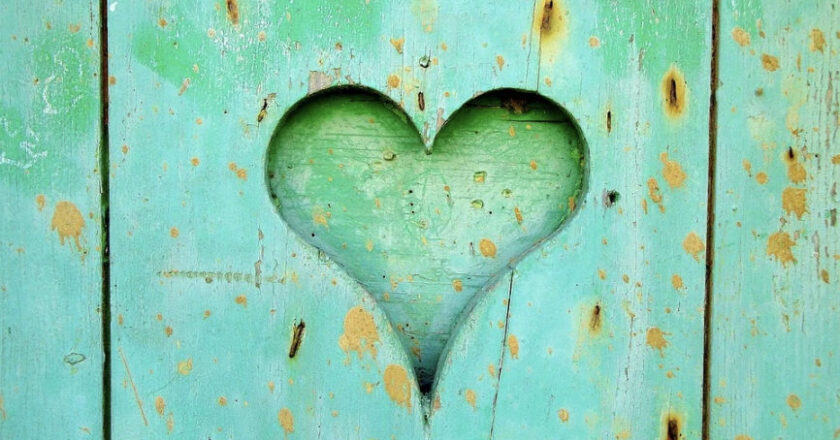 Heart carved out of green wood