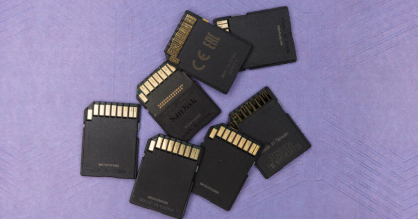 SD Cards on a purple background