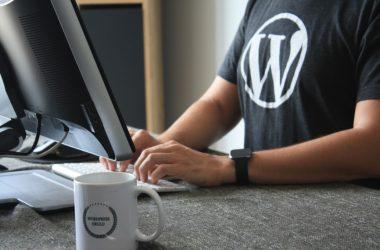 Man sitting at computer wearing a WordPress T-Shirt