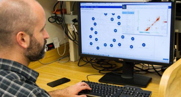 Man looking at computer screen running fleet management software