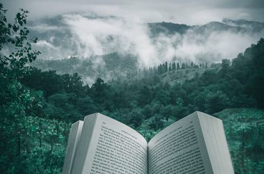 Reading or Writing a Novel